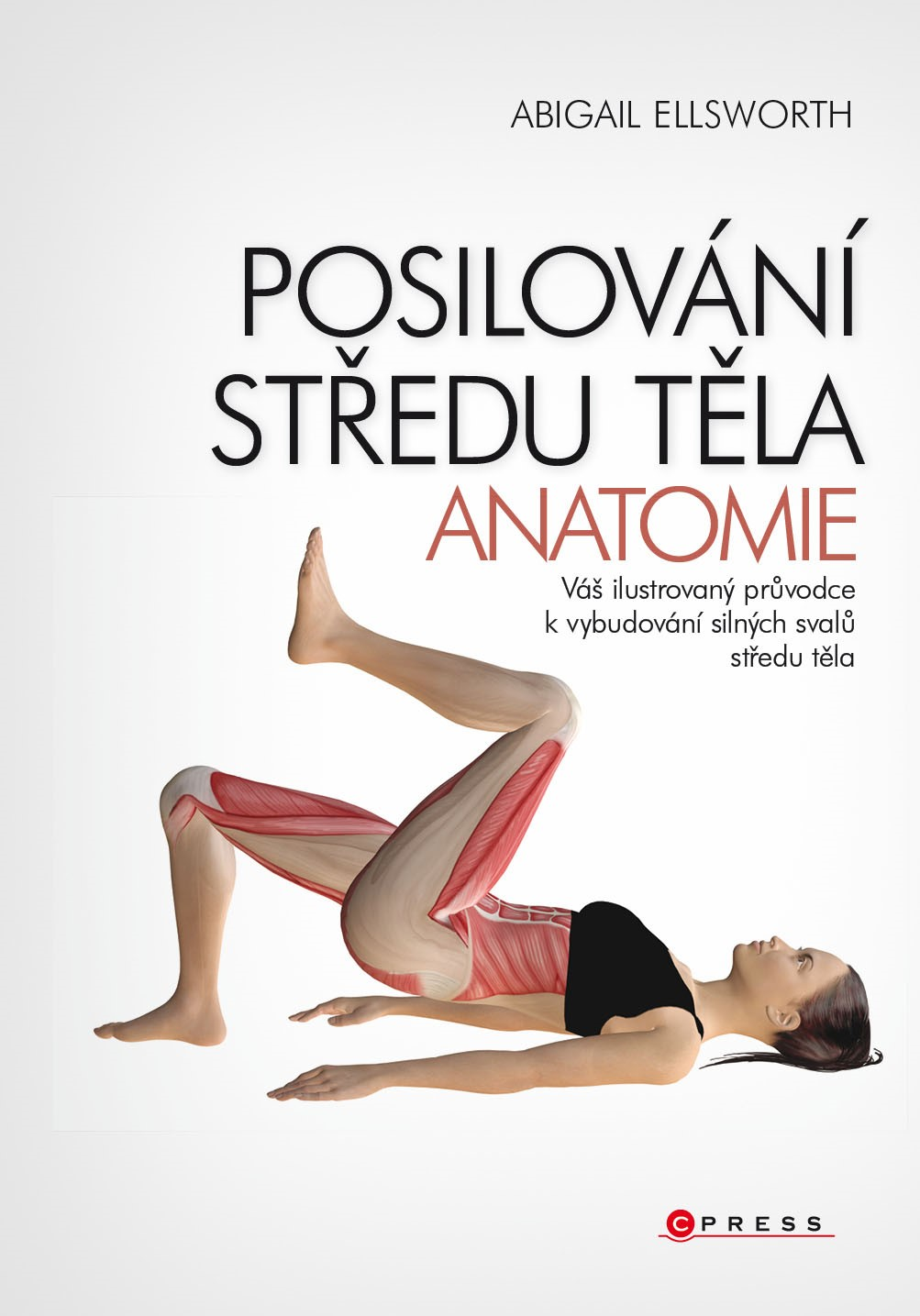 Posilování středu těla - anatomie | Abigail Ellsworth
