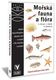 Mořská fauna a flora