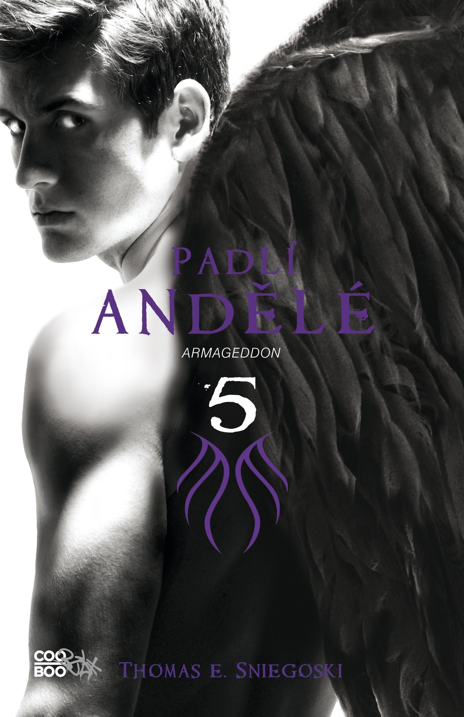 Padlí andělé 5 - Armaggedon | Thomas E. Sniegoski