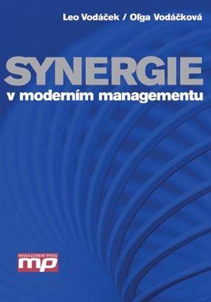 Synergie v moderním managementu