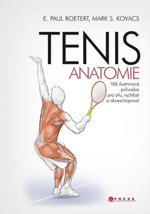 Tenis - anatomie