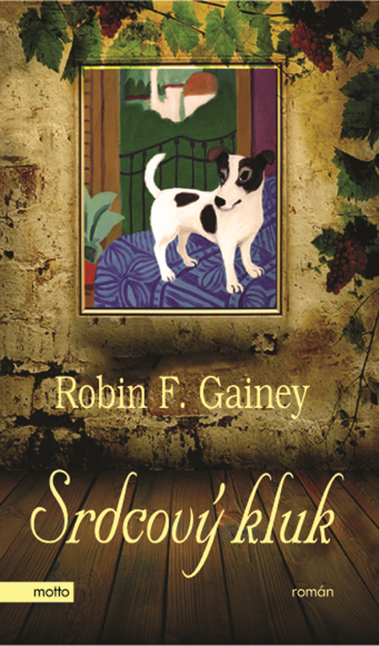 Srdcový kluk | Robin F. Gainey