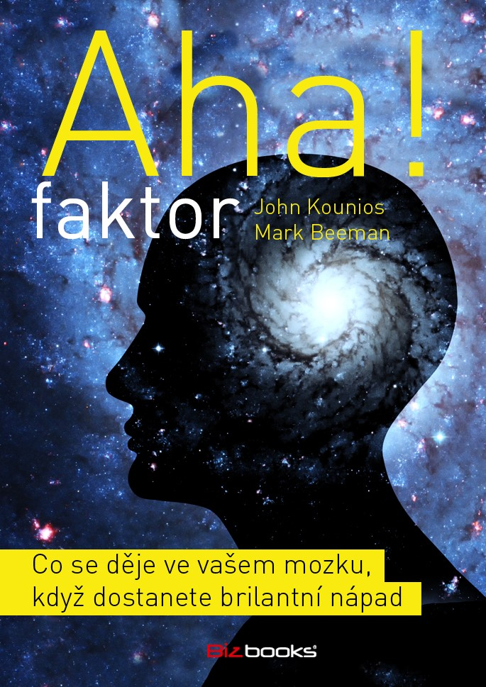 AHA FAKTOR
