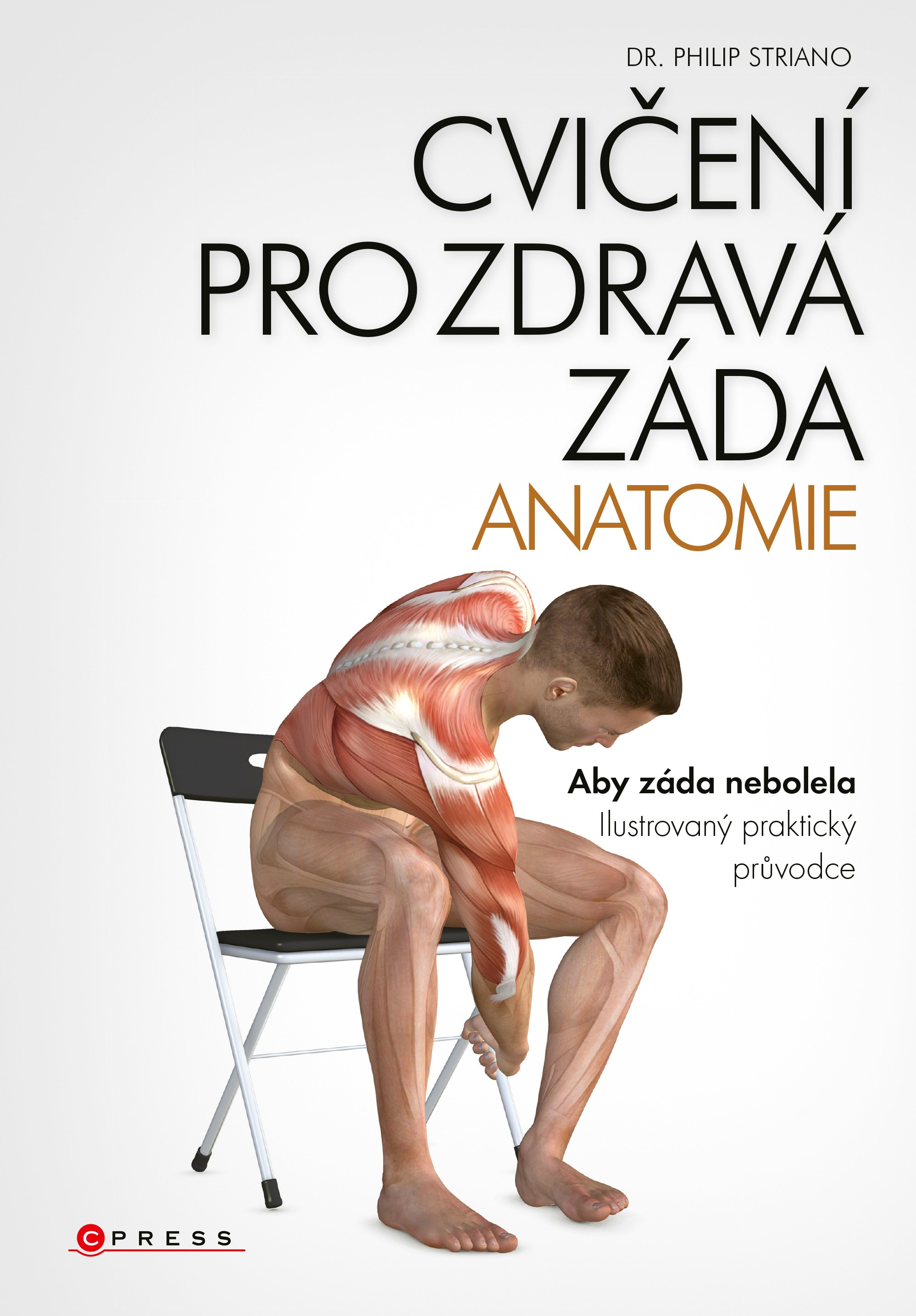 Cvičení pro zdravá záda - anatomie | dr. Philip Striano