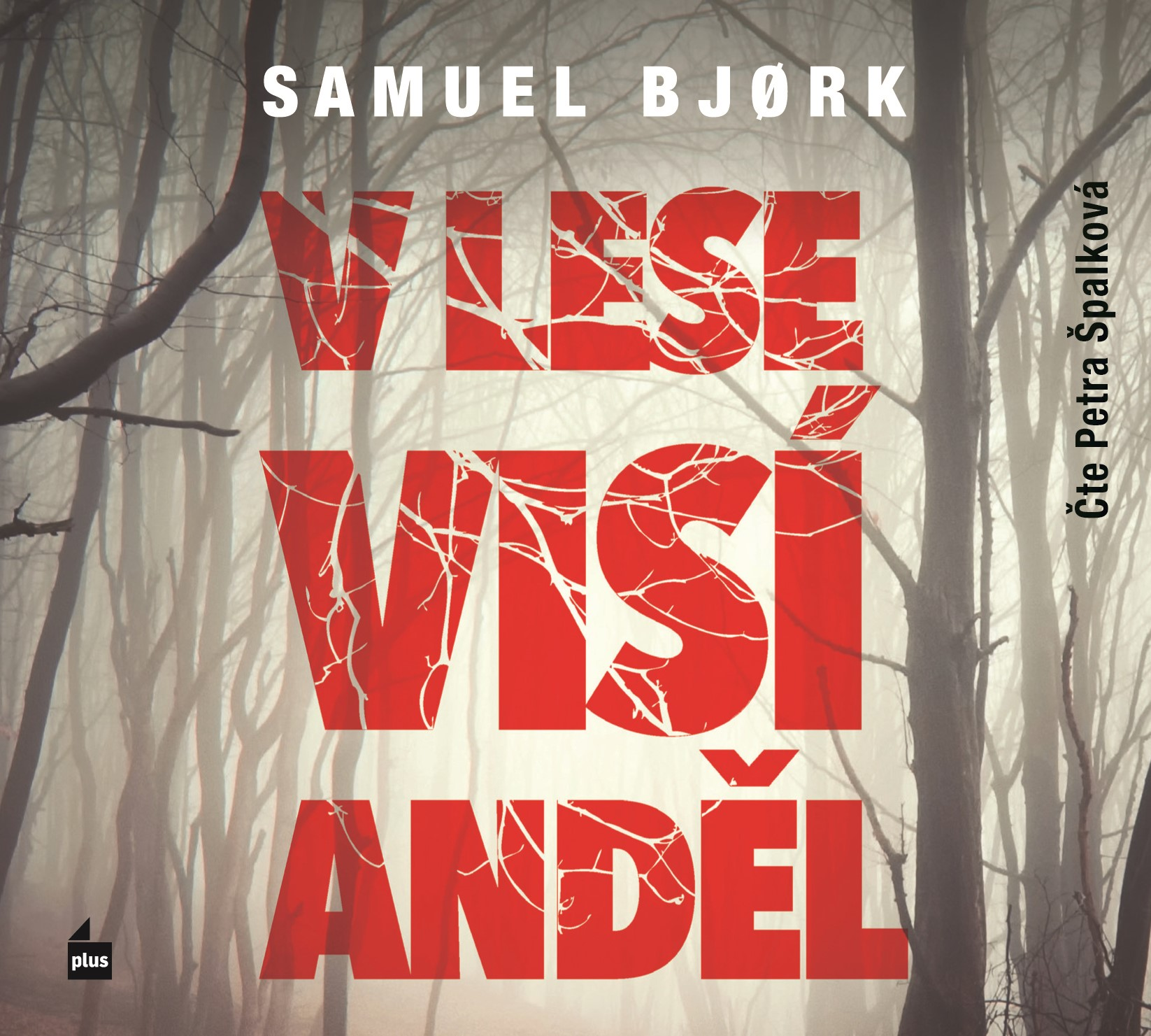 V lese visí anděl (audiokniha) | Samuel Bjork