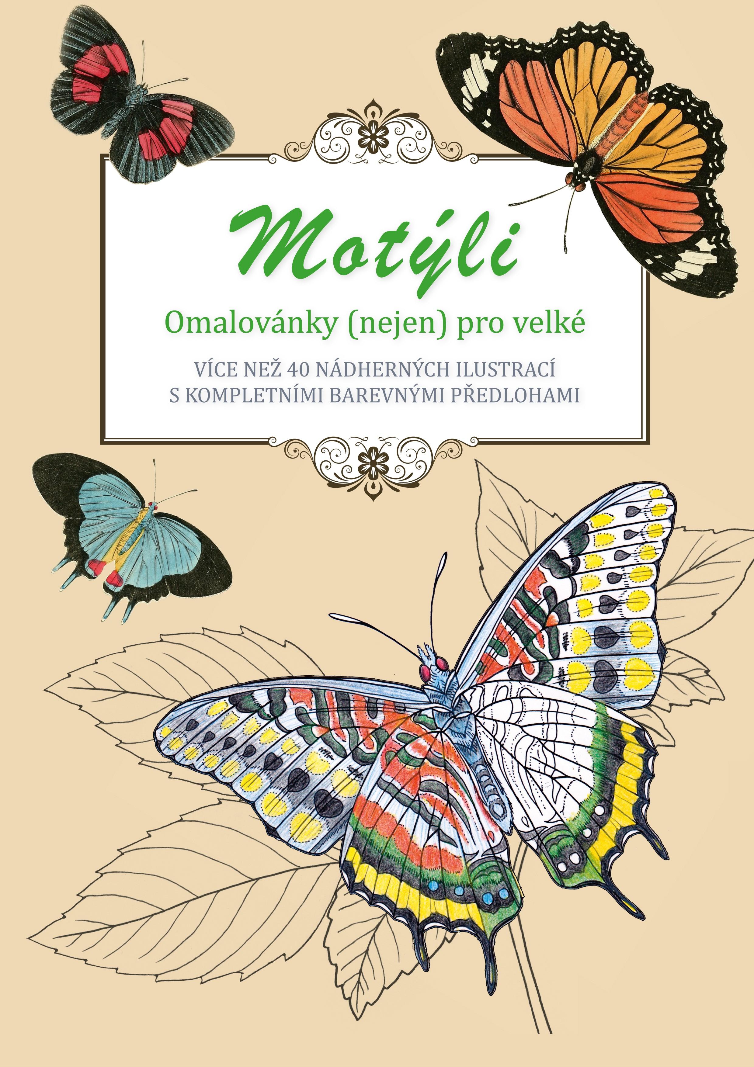 Motýli - omalovánky (nejen) pro velké
