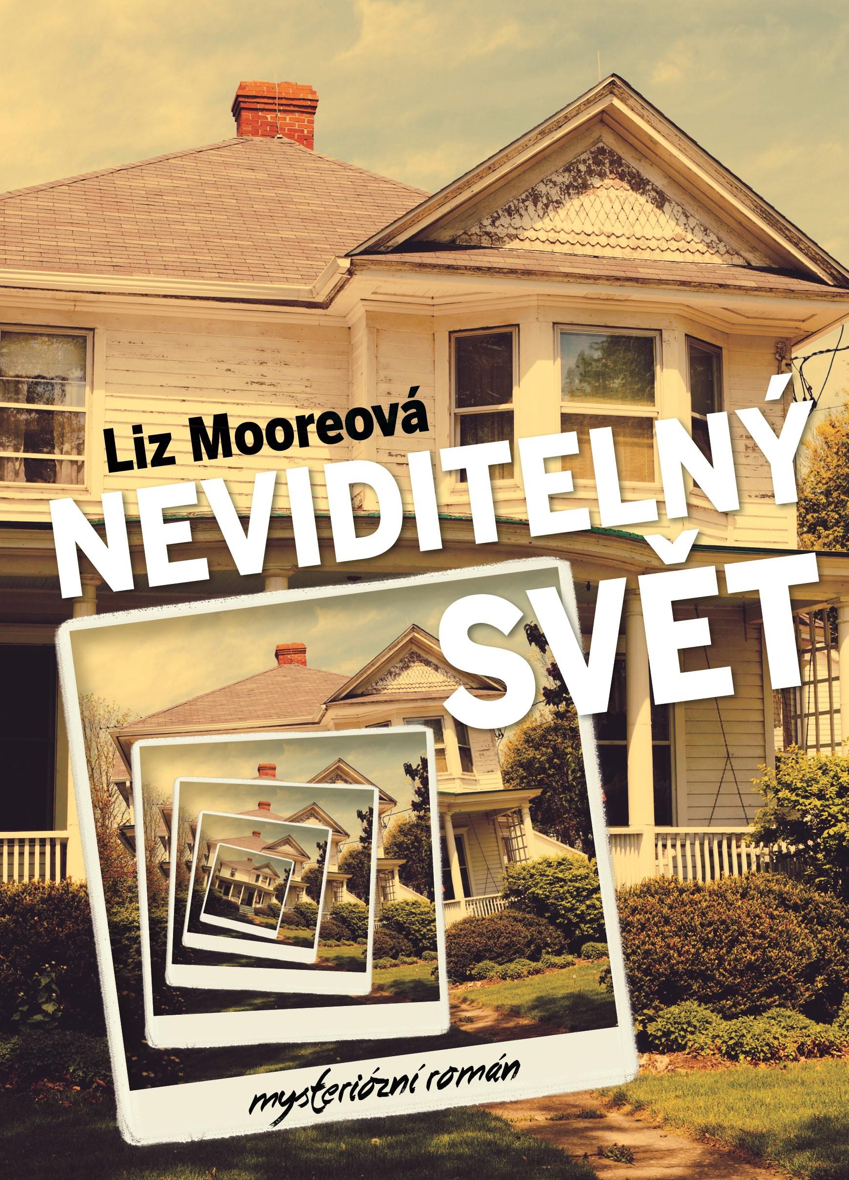 Neviditelný svět   Liz Moore