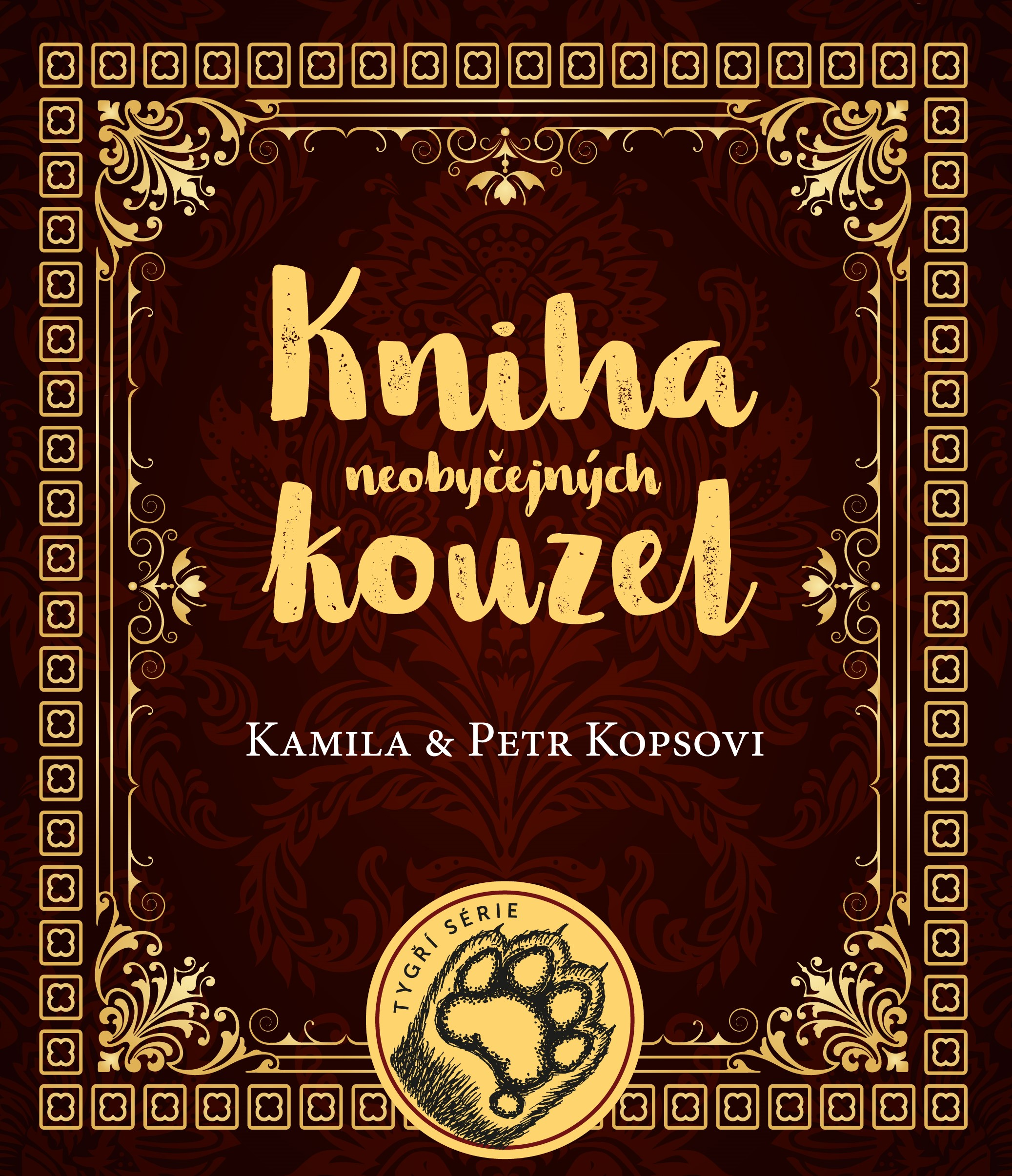 Kniha neobyčejných kouzel   Kamila Kopsová, Petr Kops